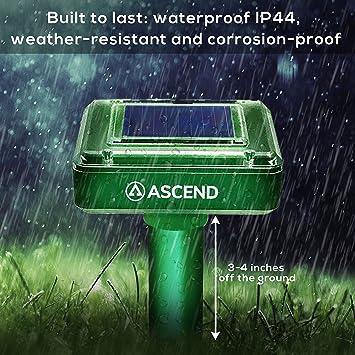 Ultimate Solar Sonic Mole Repellent > potente solución de control ...