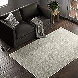 Amazon Brand – Stone & Beam Contemporary Doily Wool Farmhouse Area Rug, 5 x 8 Foot, Ivory