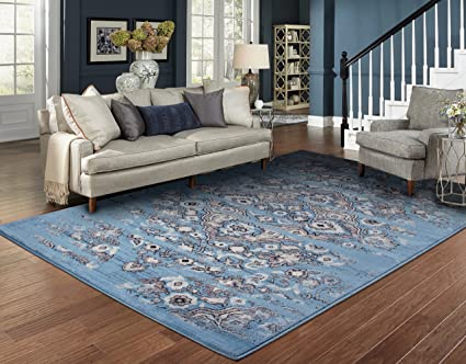 Amazon.com: Luxury Distressed Rugs for Living Room 8x10 Blue ...