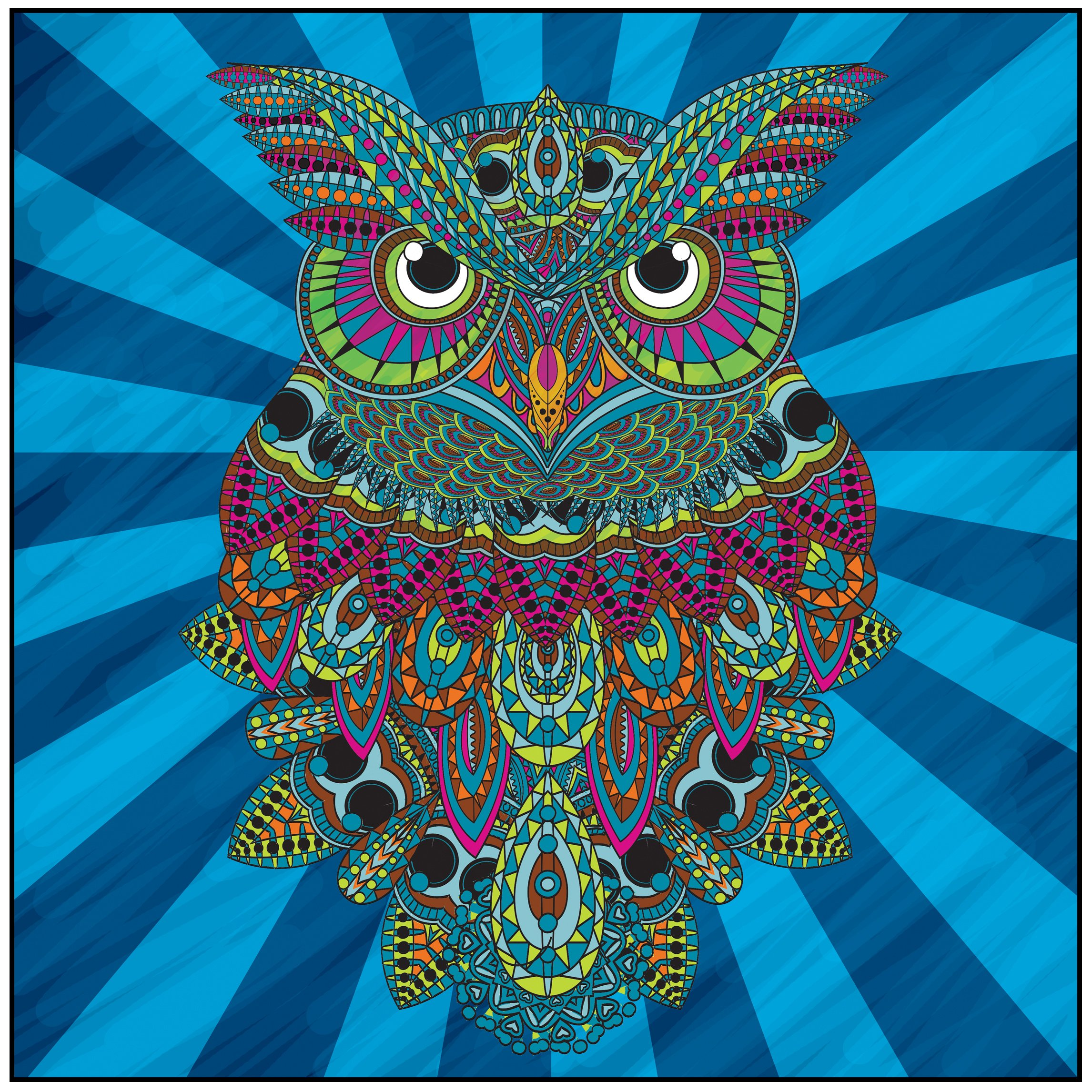 Stress relieving coloring - Amazon Com Owls Of The Night Adult Coloring Book With Bonus Relaxation Music Cd Included Color With Music 9781988137179 Newbourne Media Books