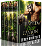 Bear Canyon Complete Series (English Edition)