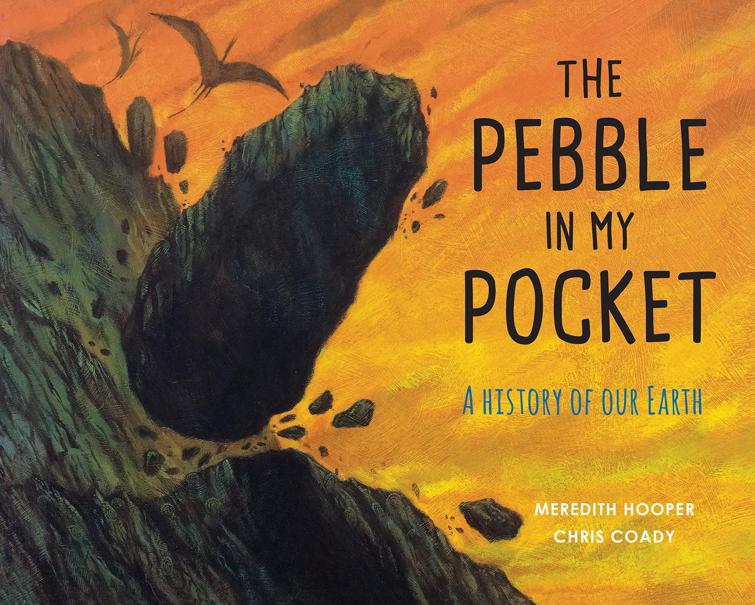 The Pebble in My Pocket: A History of Our Earth: Amazon.co.uk: Hooper, Meredith, Coady, Chris: Books