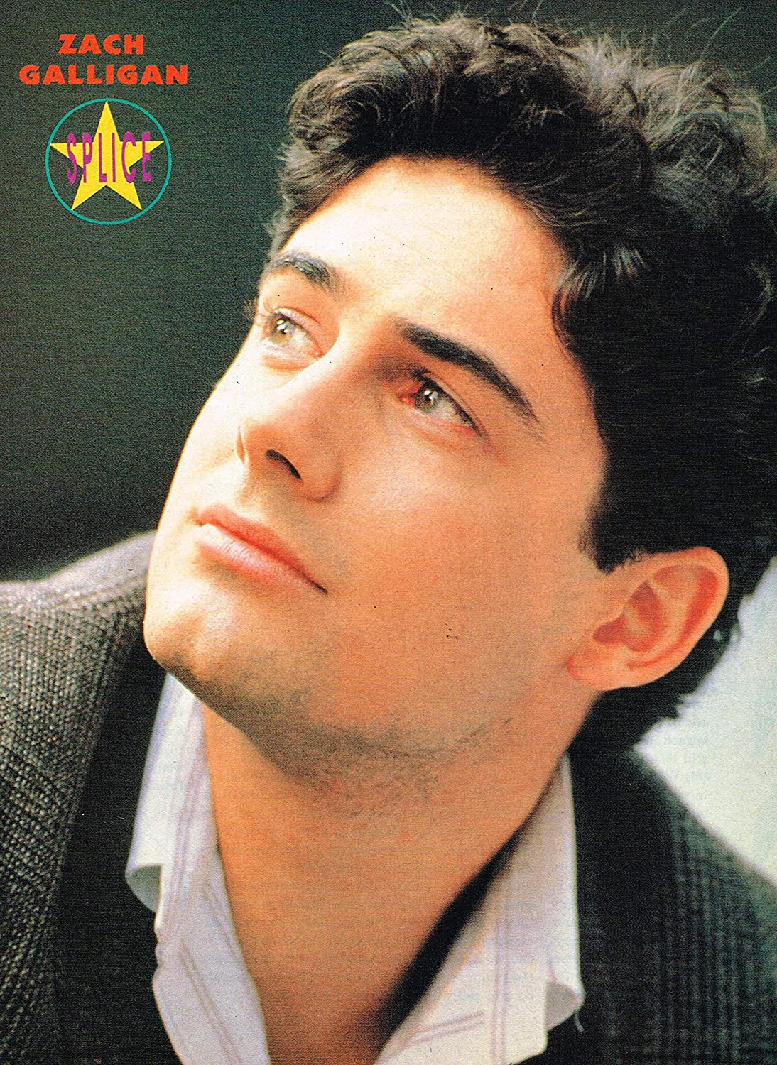 zach galligan filmszach galligan young, zach galligan, zach galligan gremlins, zach galligan wife, zach galligan all tied up, zach galligan star trek, zach galligan movies, zach galligan net worth, zach galligan imdb, zach galligan gremlins 3, zach galligan age, zach galligan instagram, zach galligan now, zach galligan twitter, zach galligan wiki, zach galligan 2019, zach galligan wikipedia, zach galligan ling ingerick, zach galligan height, zach galligan films