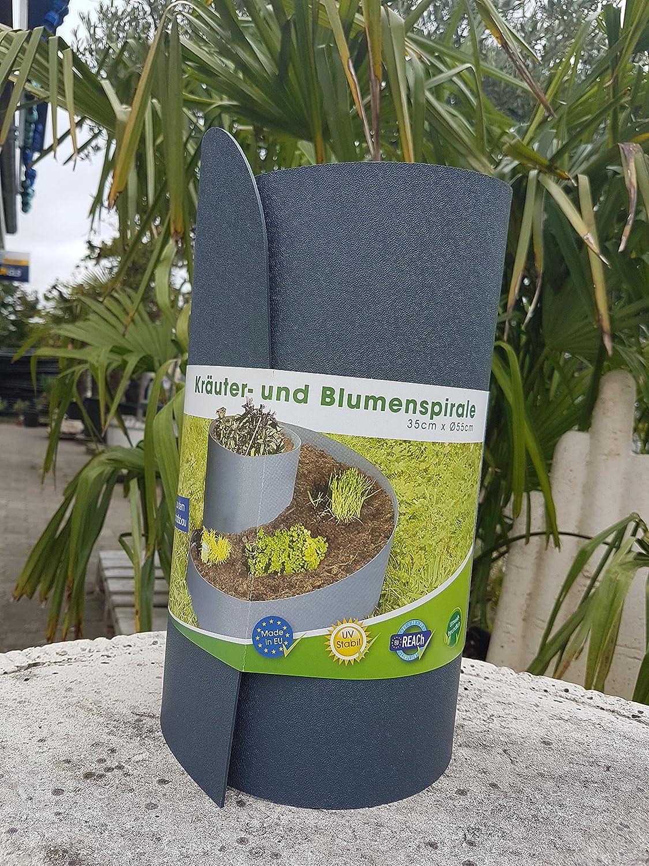 Hierbas y flor espiral hierbas Bancal hierbas Caracol hierbas ...