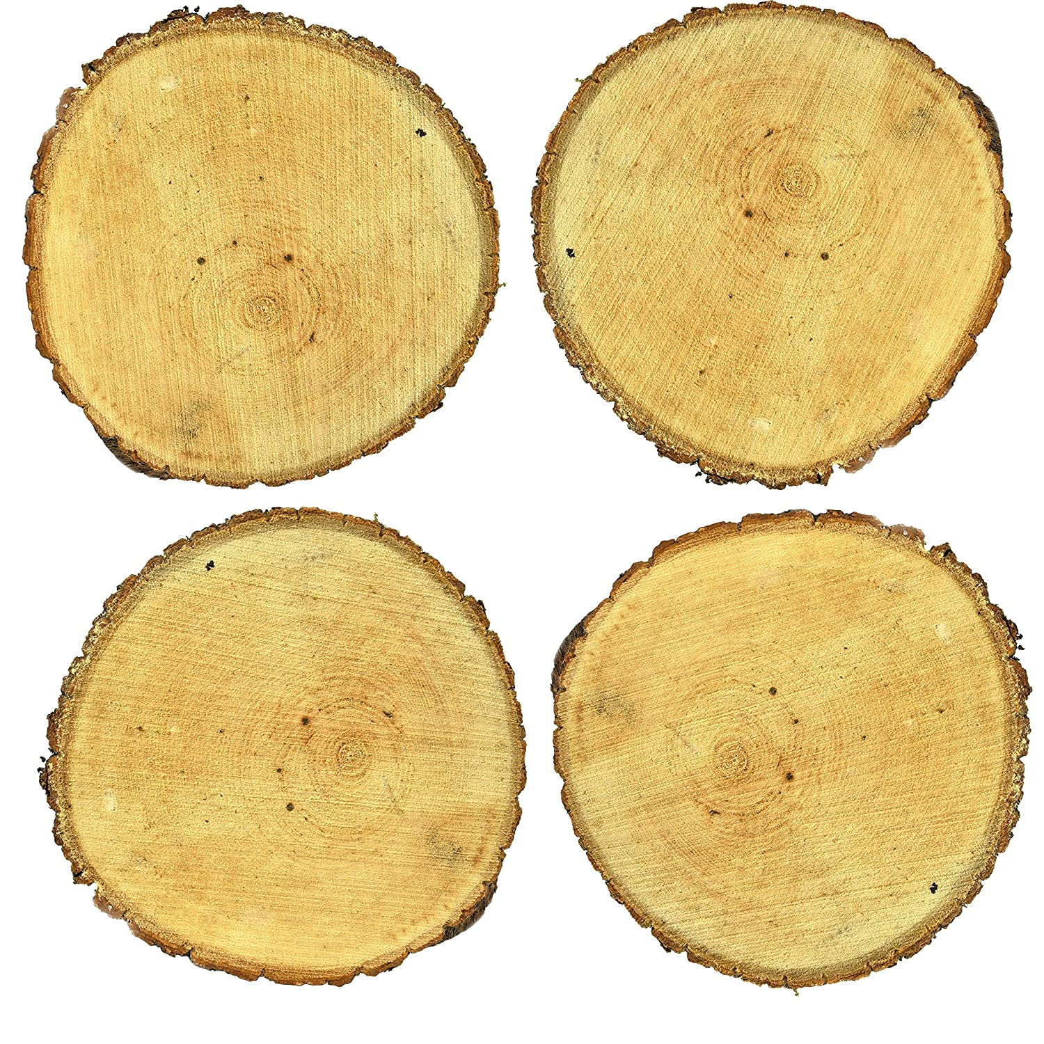 Large Cracked Mayde Basswood Decorative Tree Discs 9-11 inches, Set of 4