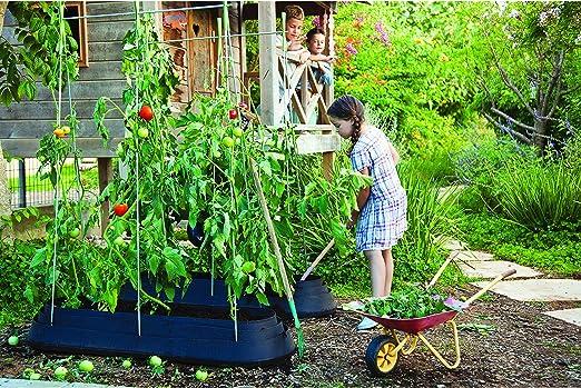 Huerto para trepadoras G-Row: Amazon.es: Jardín