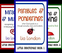 Little Devotionals (3 Book Series) by  Lia London