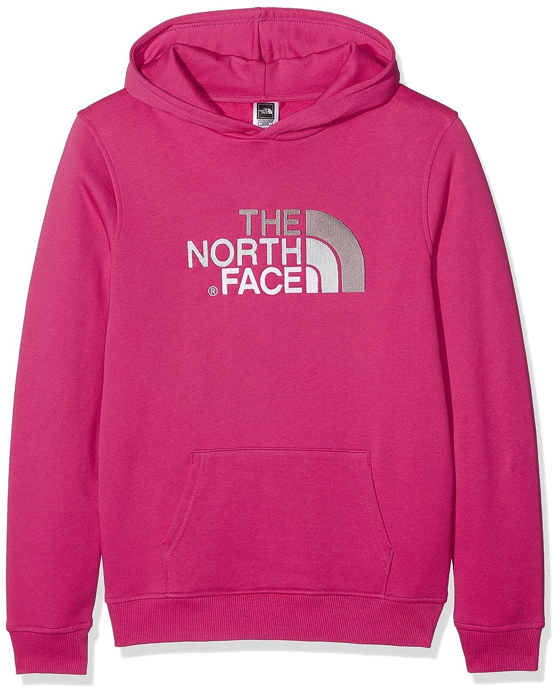 THE NORTH FACE Childrens Drew Peak Hoodie