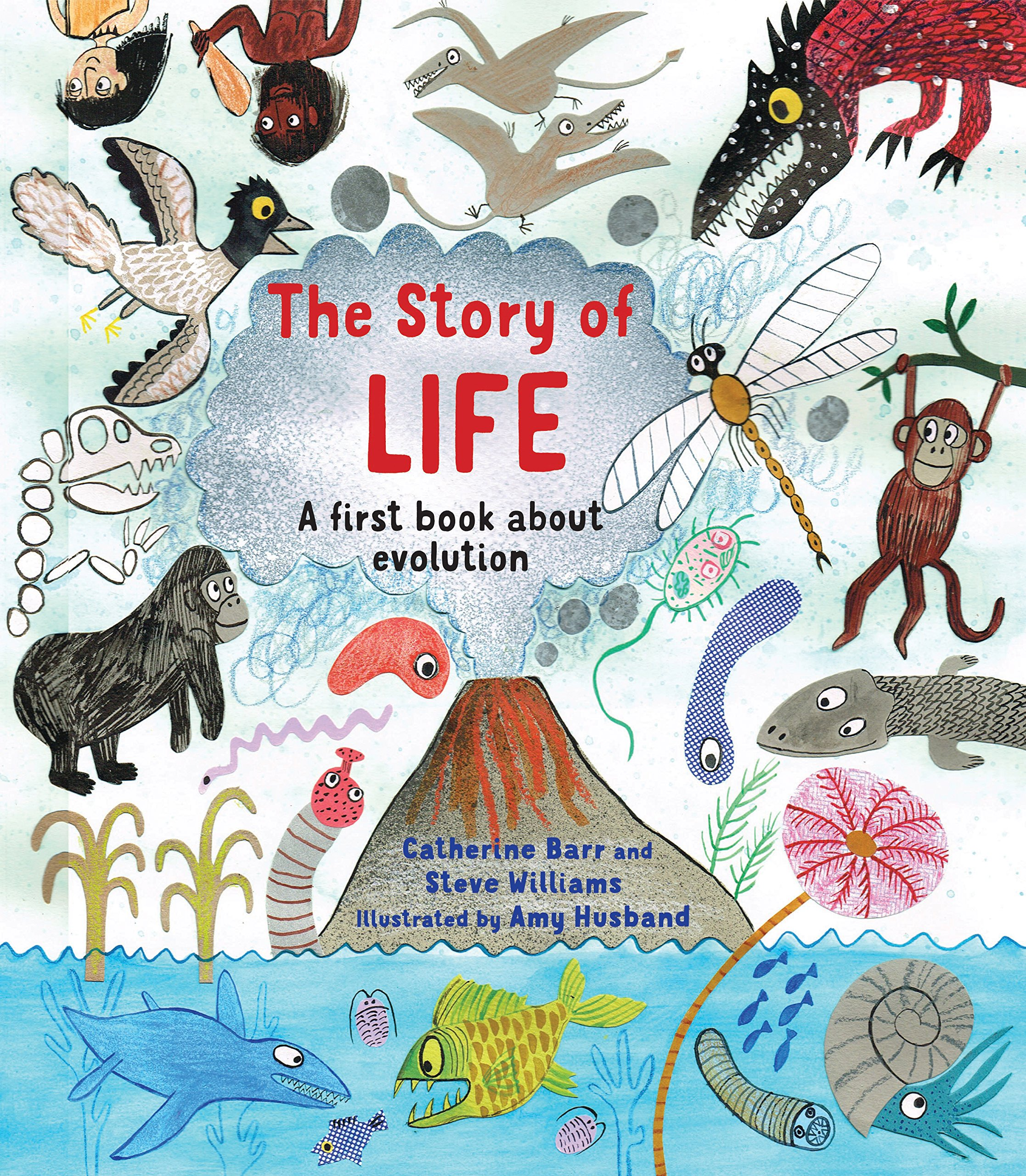 The Story Of Life  A First Book About Evolution