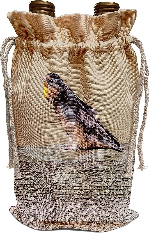 3dRose Danita Delimont - Birds - USA, Montana, Barn Swallow fledgling begging for food - Wine Bag (wbg_231112_1)