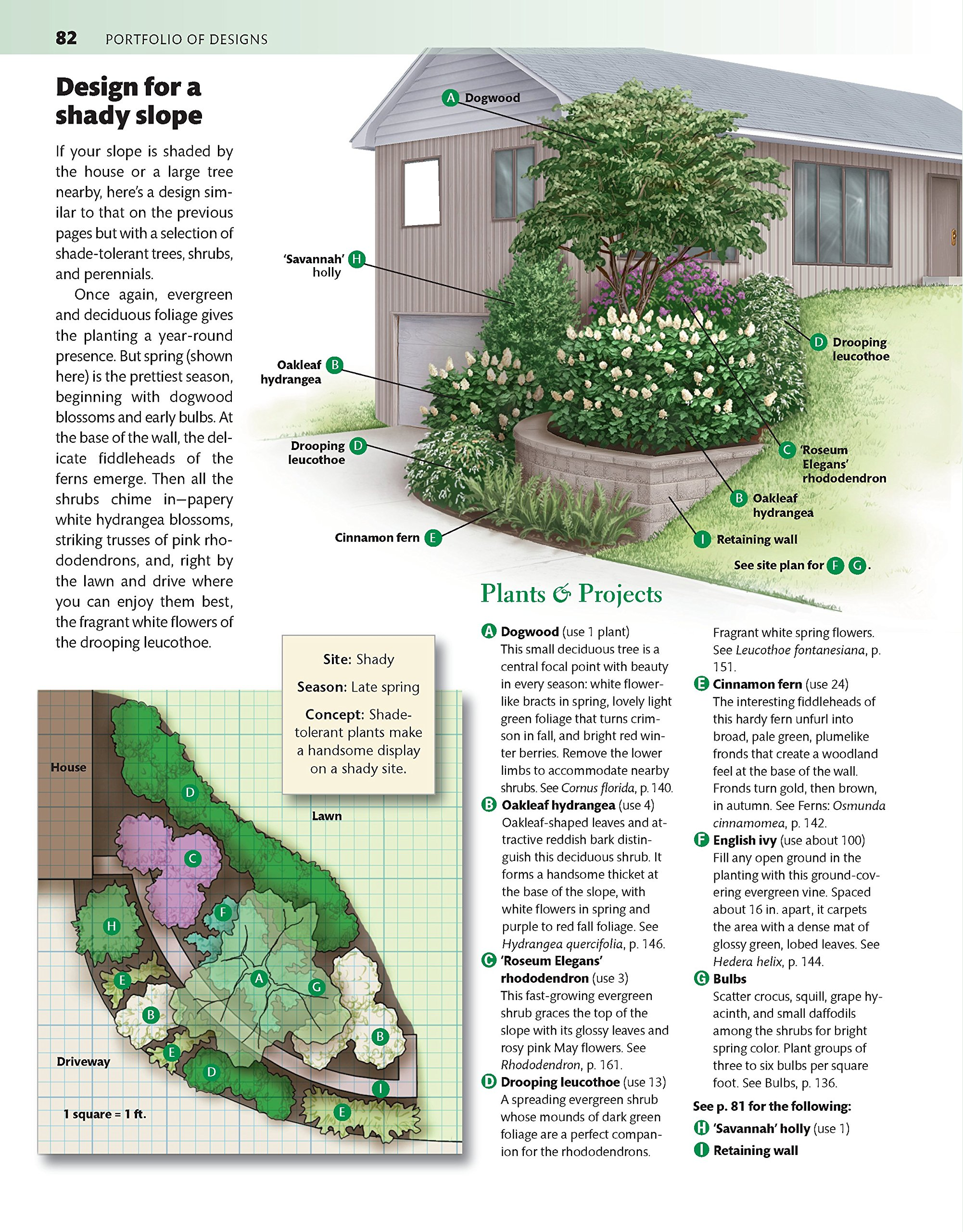 Southeast Home Landscaping, 3rd Edition (Creative Homeowner) 54 ...