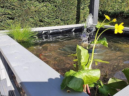 Clear View Garden Aquarium Lotus Square - Estanque de jardín elevado con ventanas: Amazon.es: Jardín