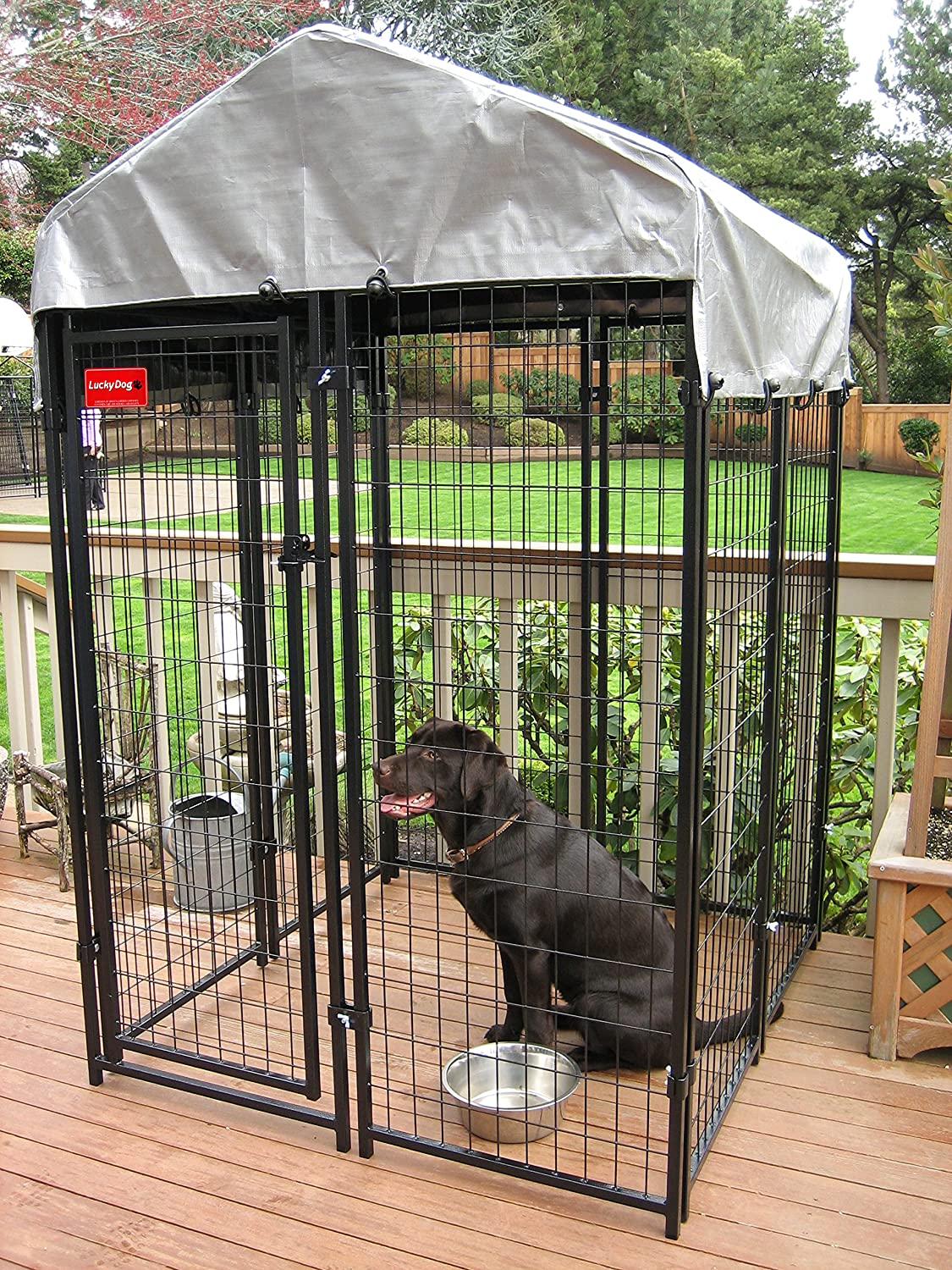 Amazon.com : Lucky Dog Uptown Welded Wire Kennel (6\'Hx4\'Wx4\'L ...