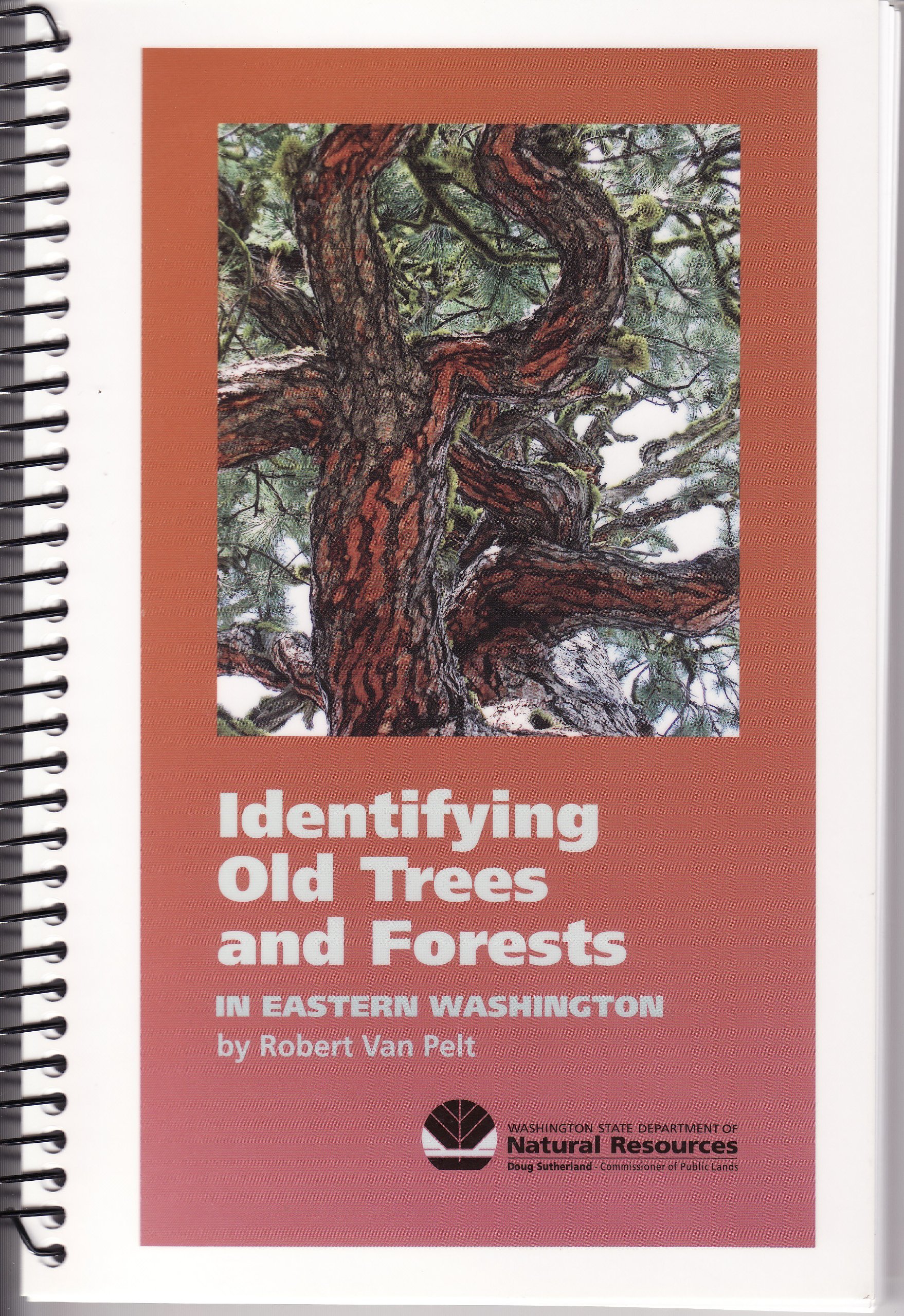 Identifying Old Trees and Forests in Eastern Washington, Robert Van Pelt
