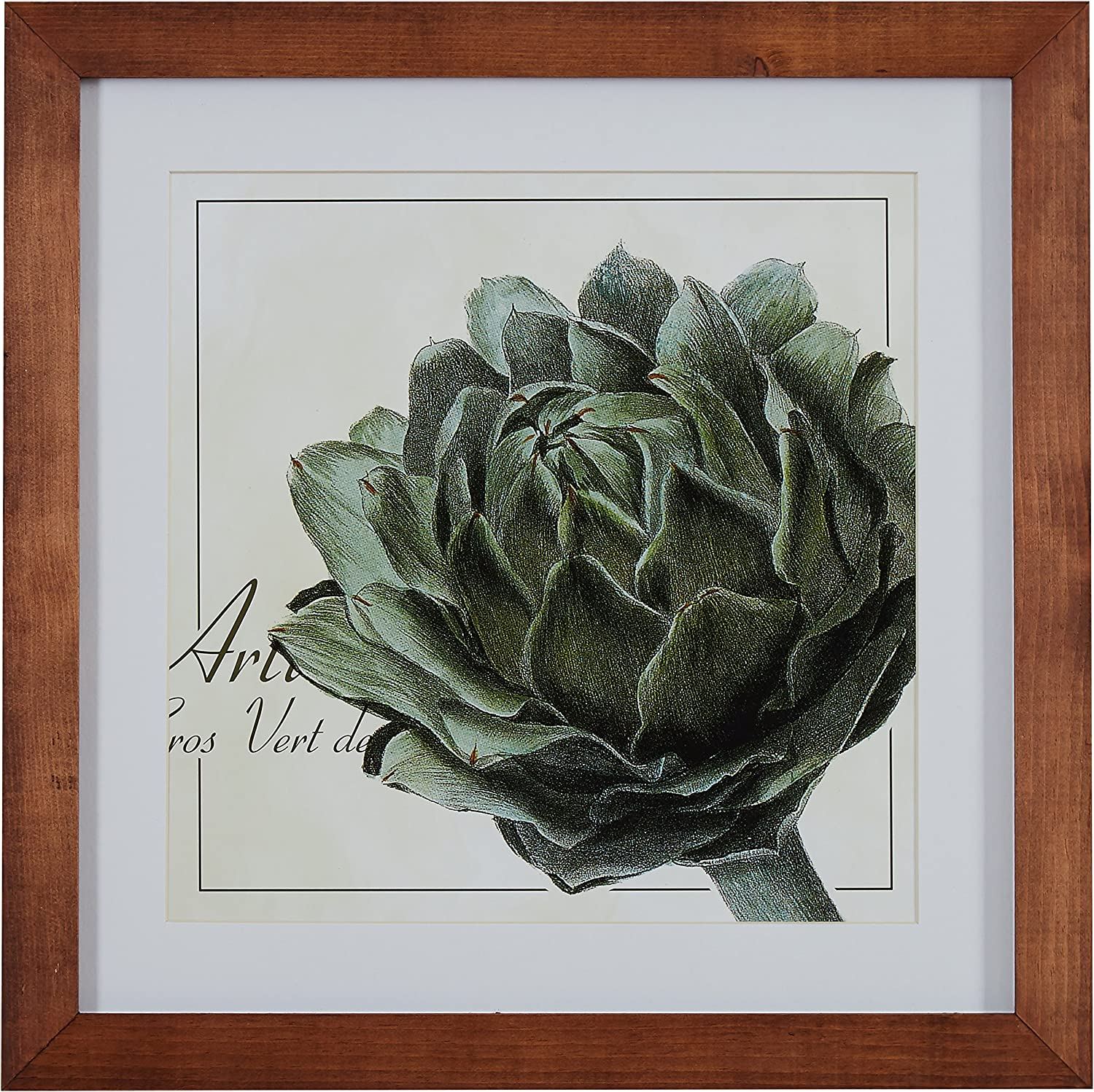 "Amazon Brand – Stone & Beam Modern Botanical Print Wall Art of Green Artichoke, Brown Frame, 14.5"" x 14.5"""