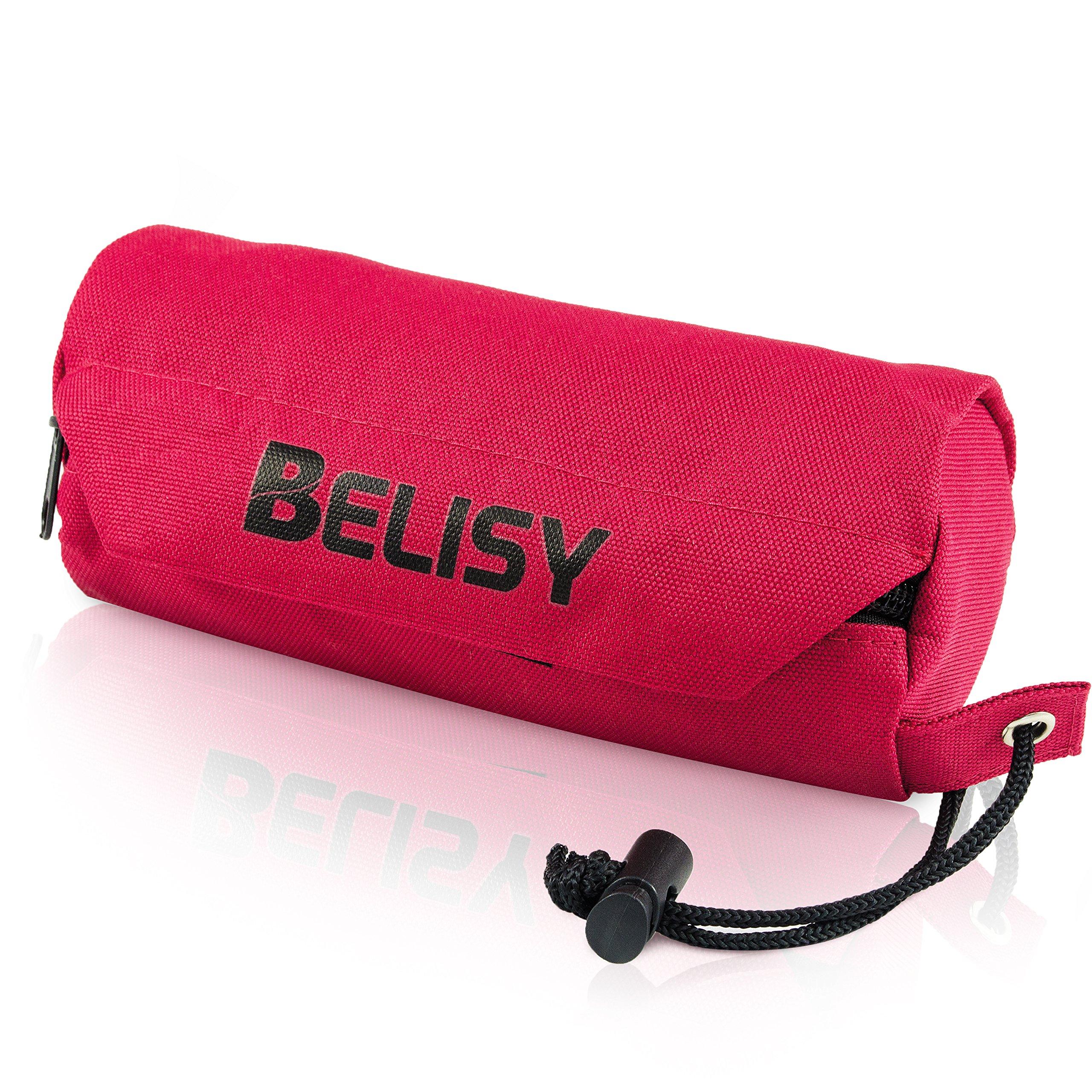 BELISY Futterbeutel für Hunde - von Trainern empfohlen - waschbar - Leckerlie Beutel … product image