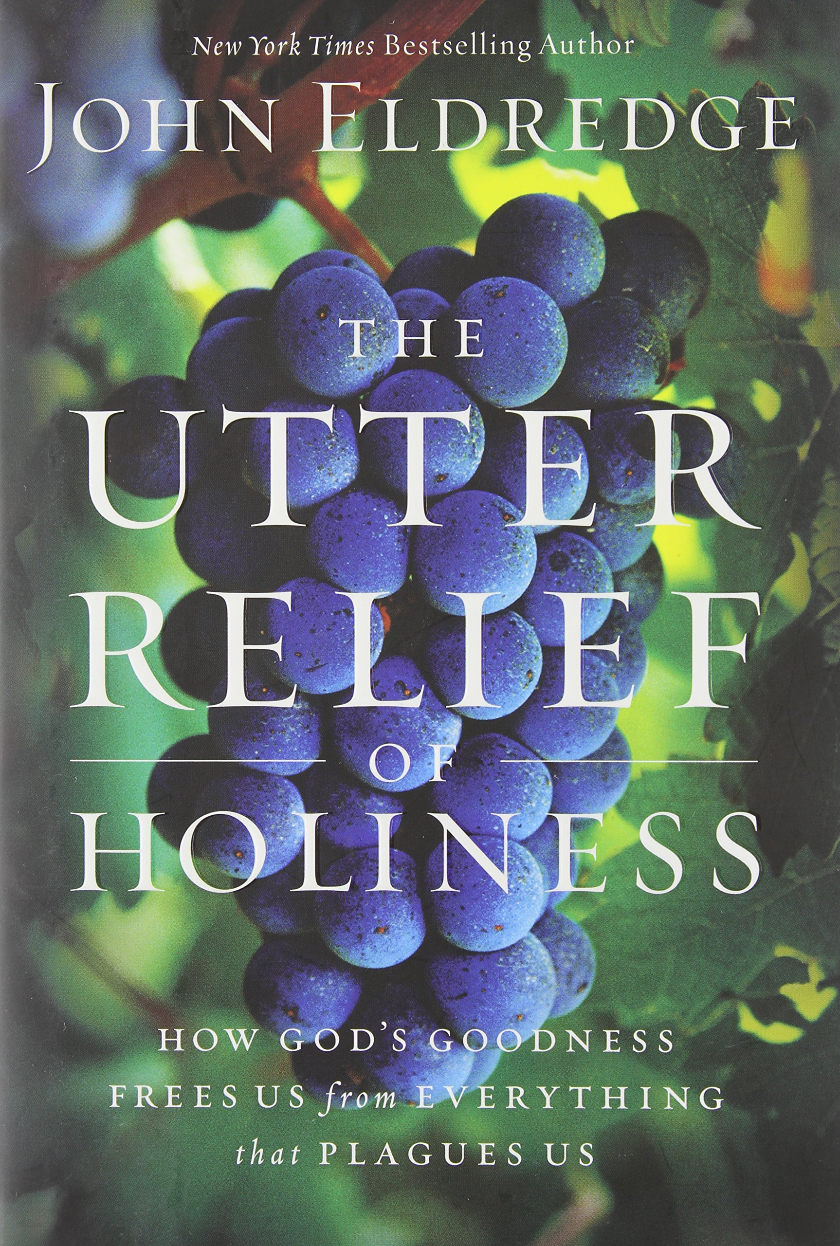 The Utter Relief of Holiness: How God's Goodness Frees Us from Everything that Plagues Us PDF