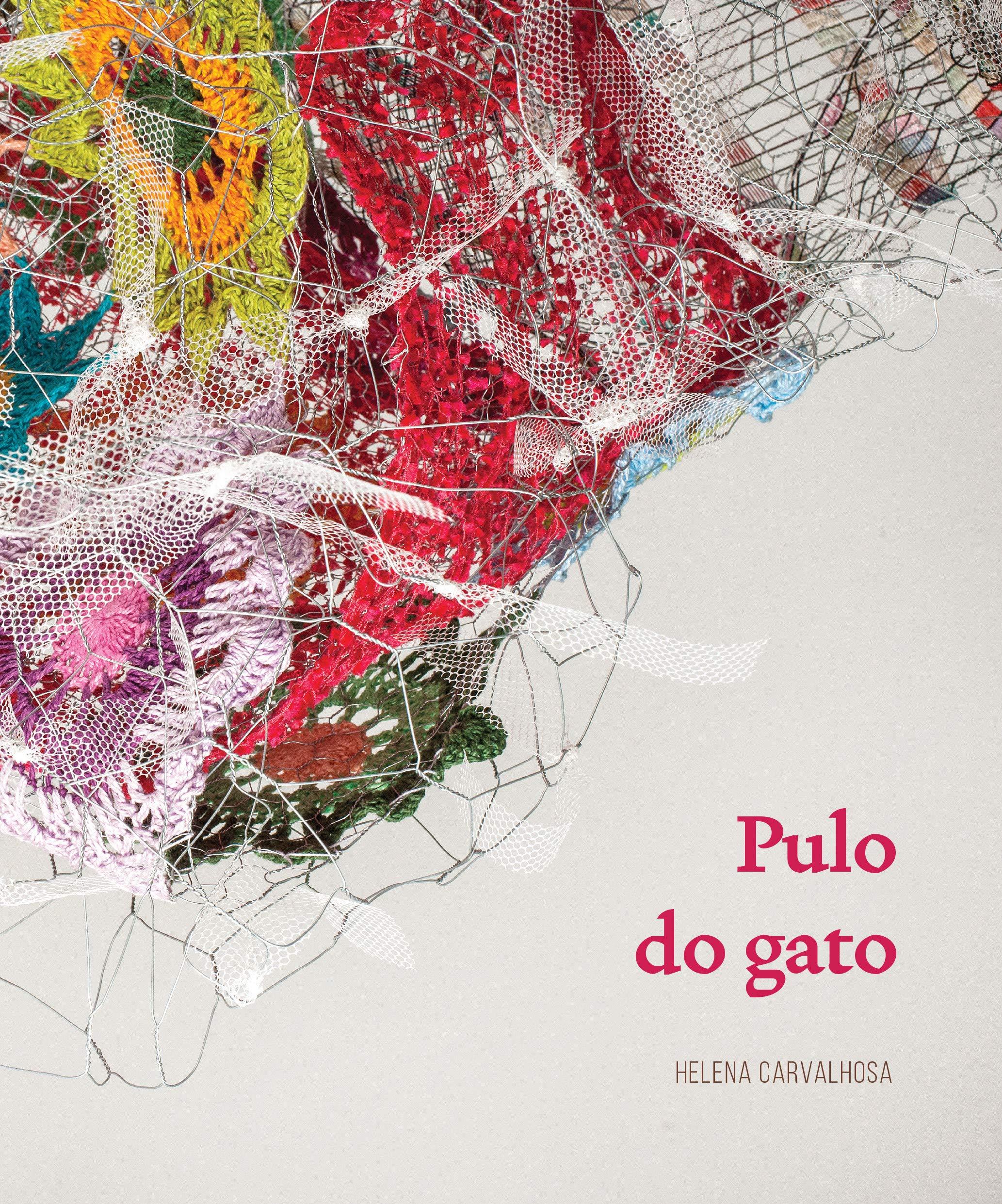 Pulo do Gato (Portuguese Brazilian) Paperback – 2016
