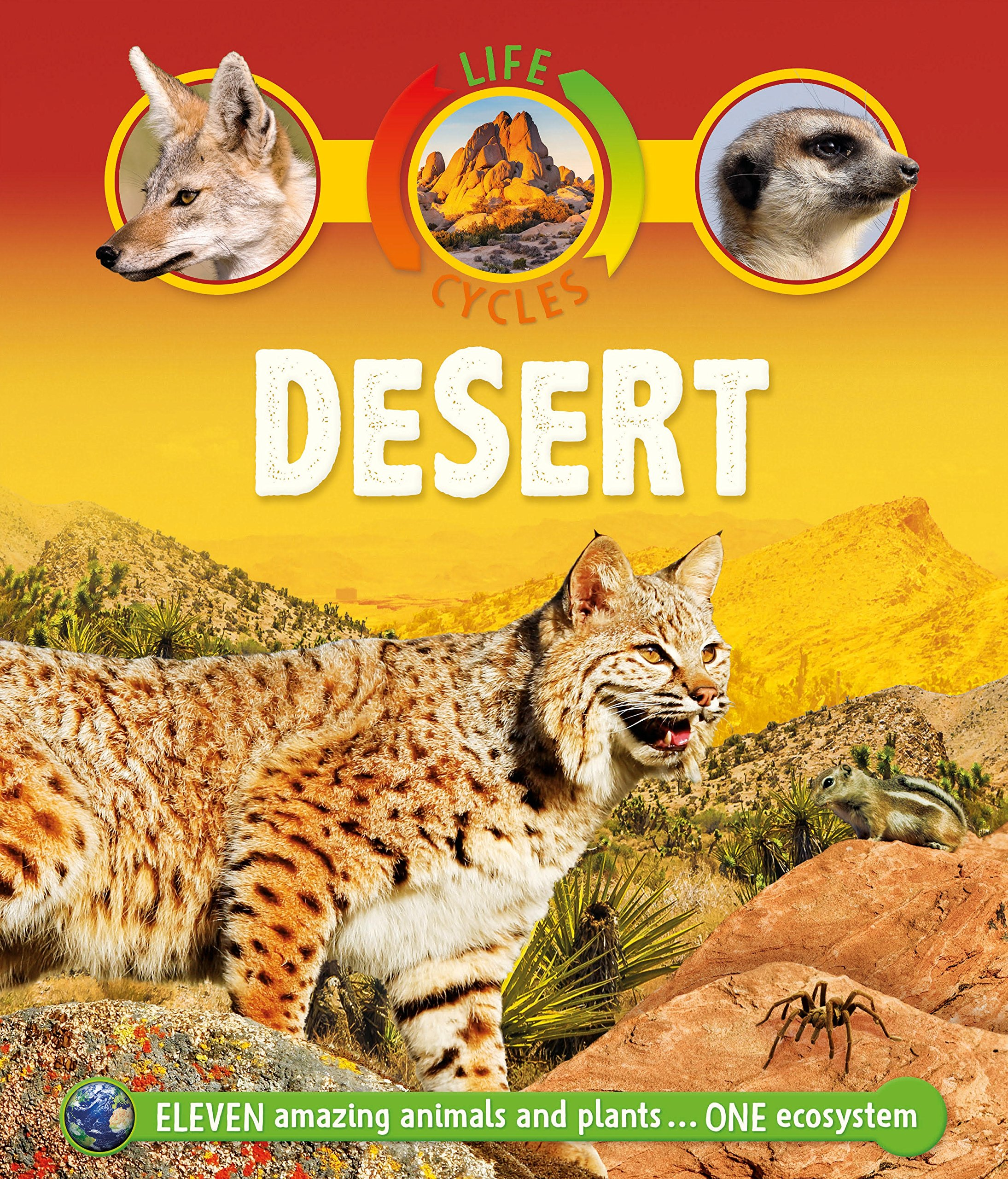 Life Cycles: Desert PDF