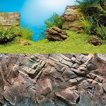 Juwel - 1 Póster con imagen de fondo para decoración de acuario, de 100 x 50 cm, talla L, extra-large: Amazon.es: Productos para mascotas