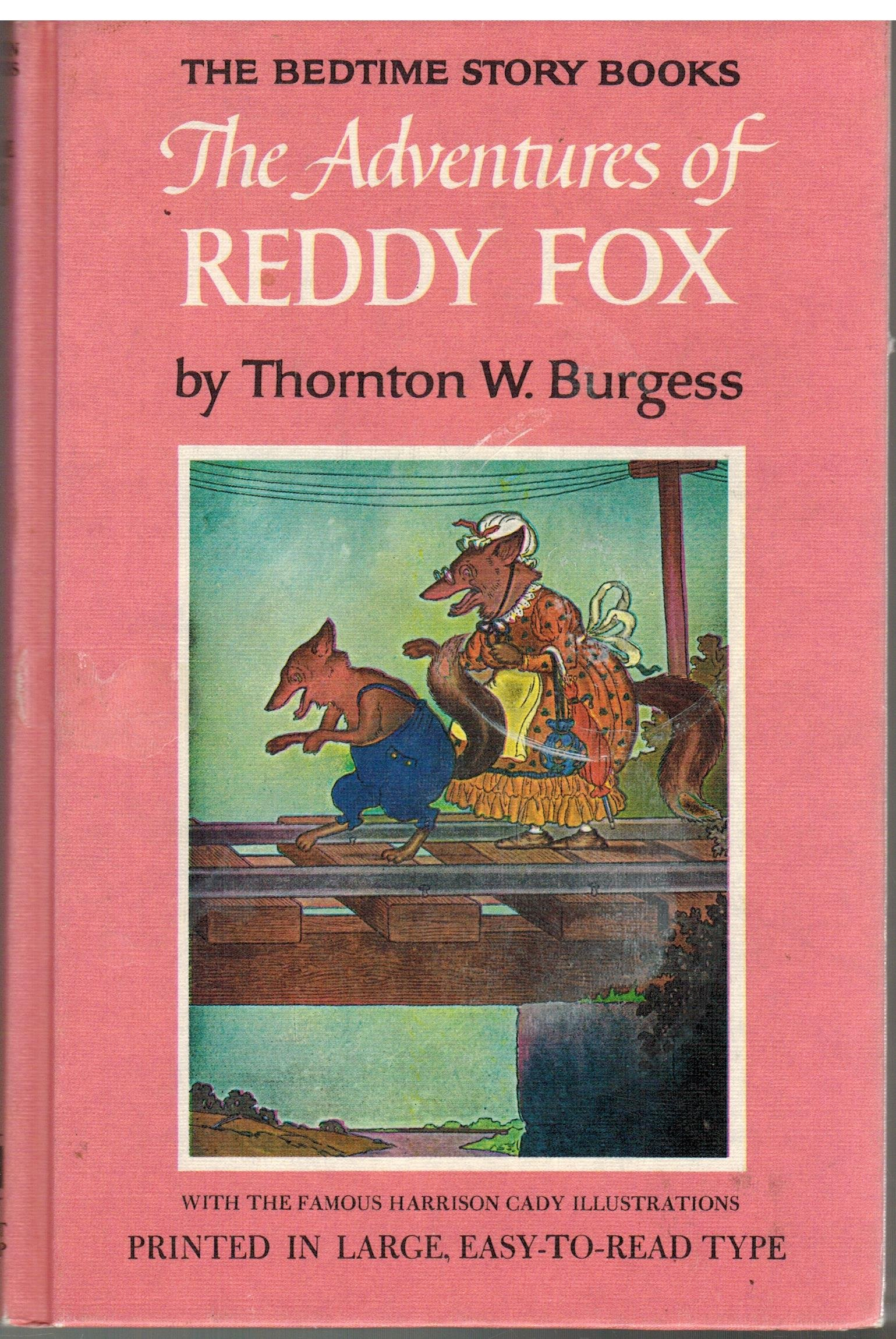Image for Adventures of Reddy Fox
