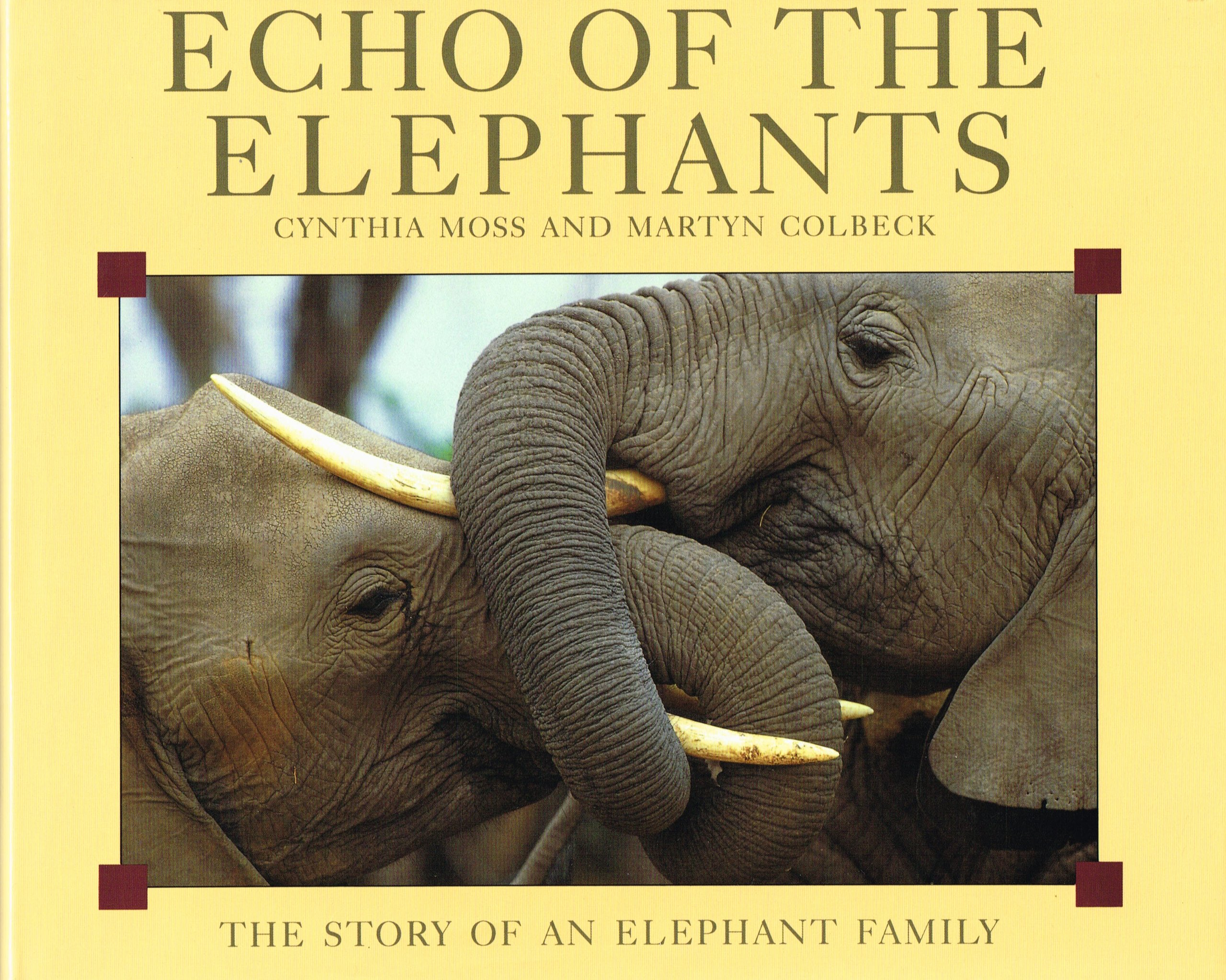 Echo of the Elephants: Story of an Elephant Family: Amazon.co.uk ...