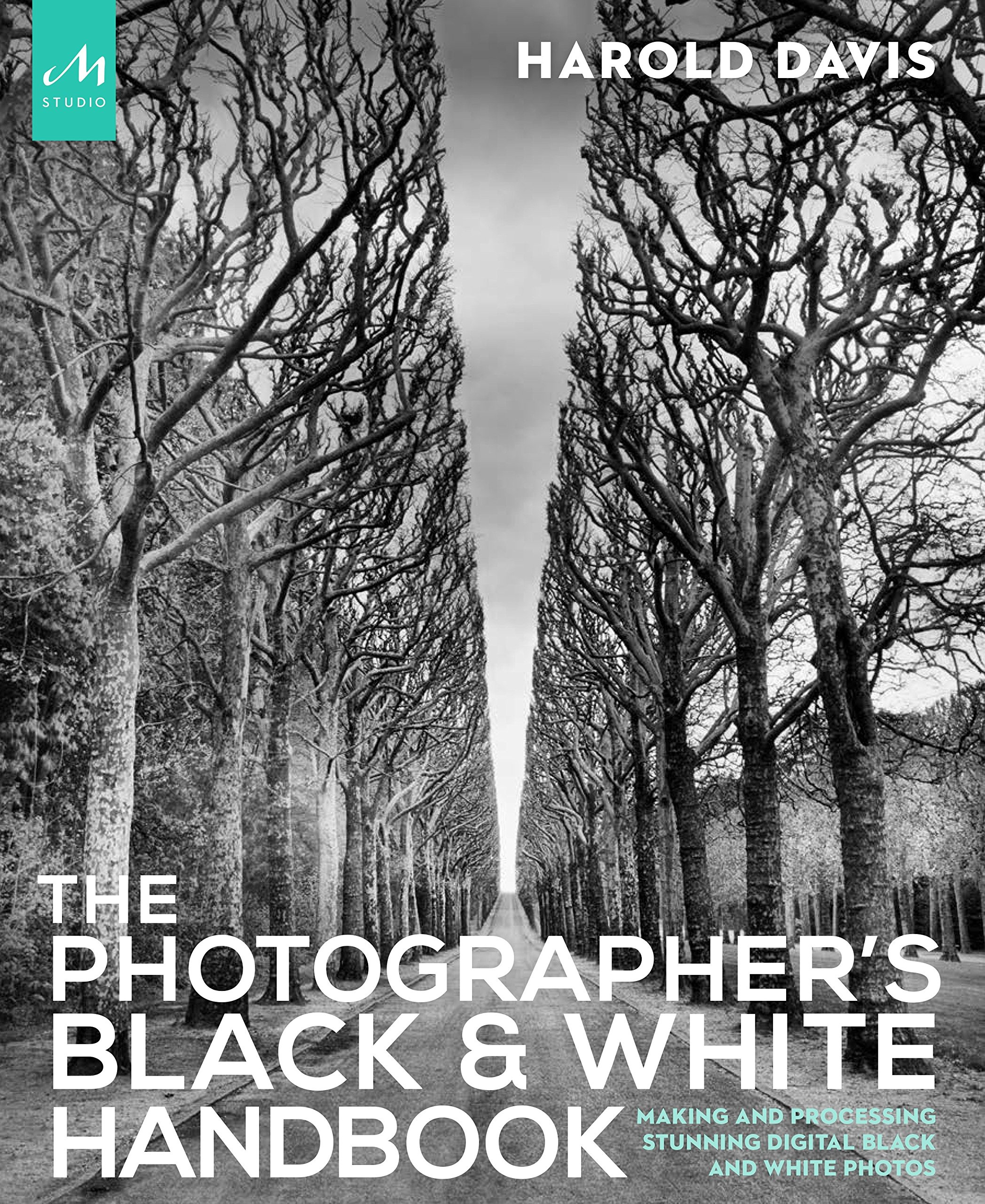 The photographers black and white handbook making and processing stunning digital black and white photos harold davis 9781580934787 amazon com books