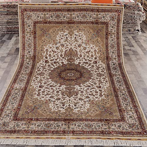 Yilong 6 x9 Vintage Hand Knotted Persian Silk Rugs Classic Oriental Floral Medallion Carpet