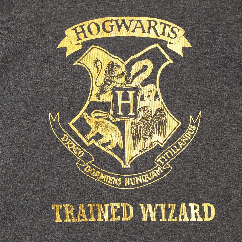 Harry Potter Boys Hogwarts T-Shirt Pack of 2