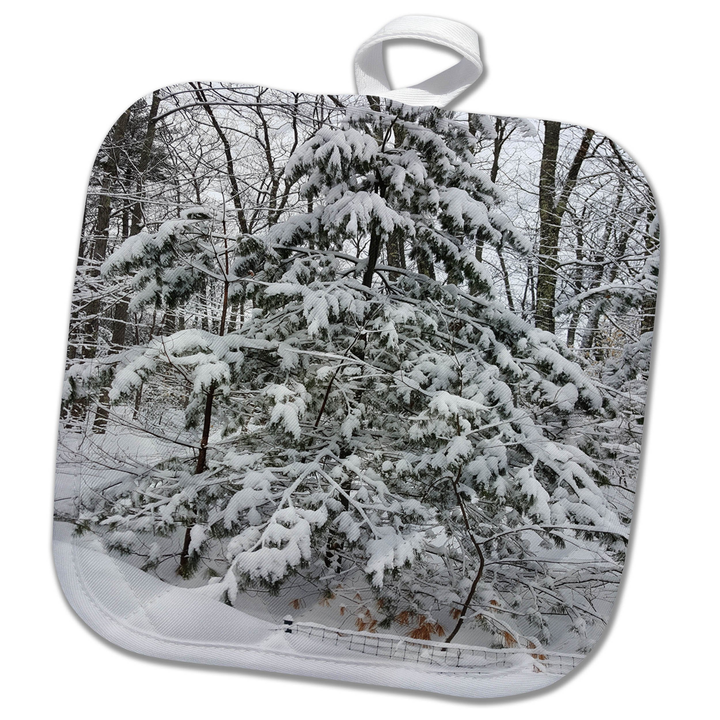3dRose TDSwhite – Winter Seasonal Nature Photos - Woods After Snowstorm Winter Weather - 8x8 Potholder (phl_285065_1)