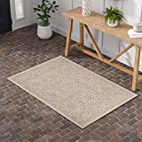 Amazon Brand – Stone & Beam Contemporary Floral Medallion Wool Area Rug, 4' x 6', Rust on Ivory