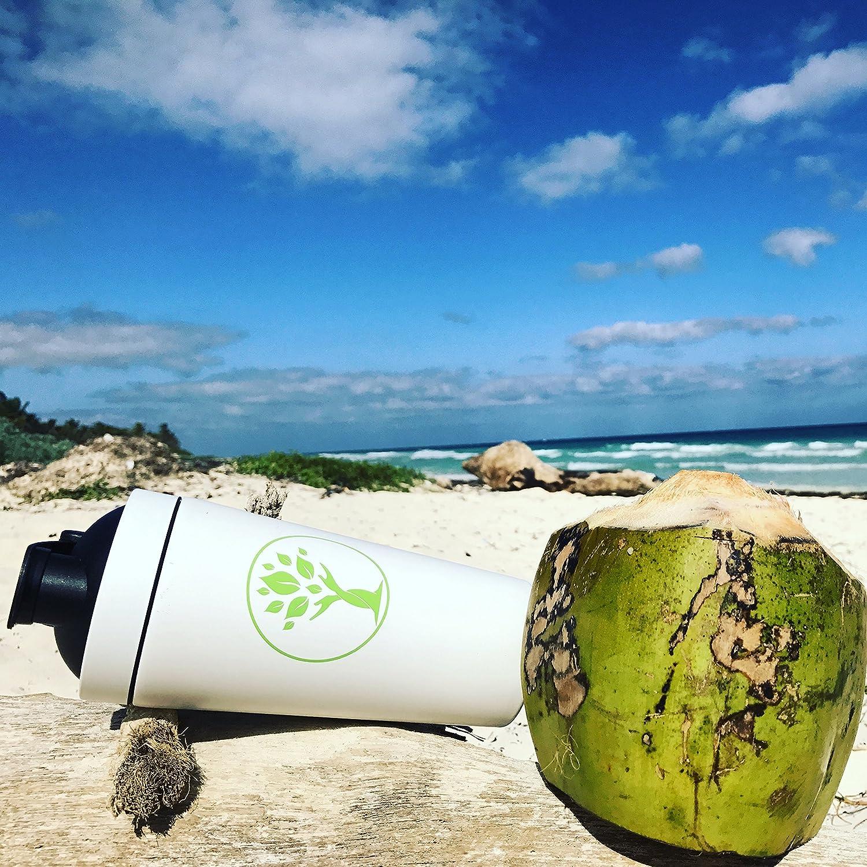 Amazon.com: Stainless Steel Shaker & Water Bottle, BPA-Free, Eco ...