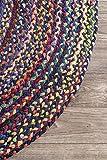 nuLOOM Hand Braided Tammara Cotton Oval Rug, 3' x