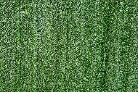 VA GARDENS Seto Artificial Verde Ocultación para Vallas (2 X 5 M): Amazon.es: Jardín