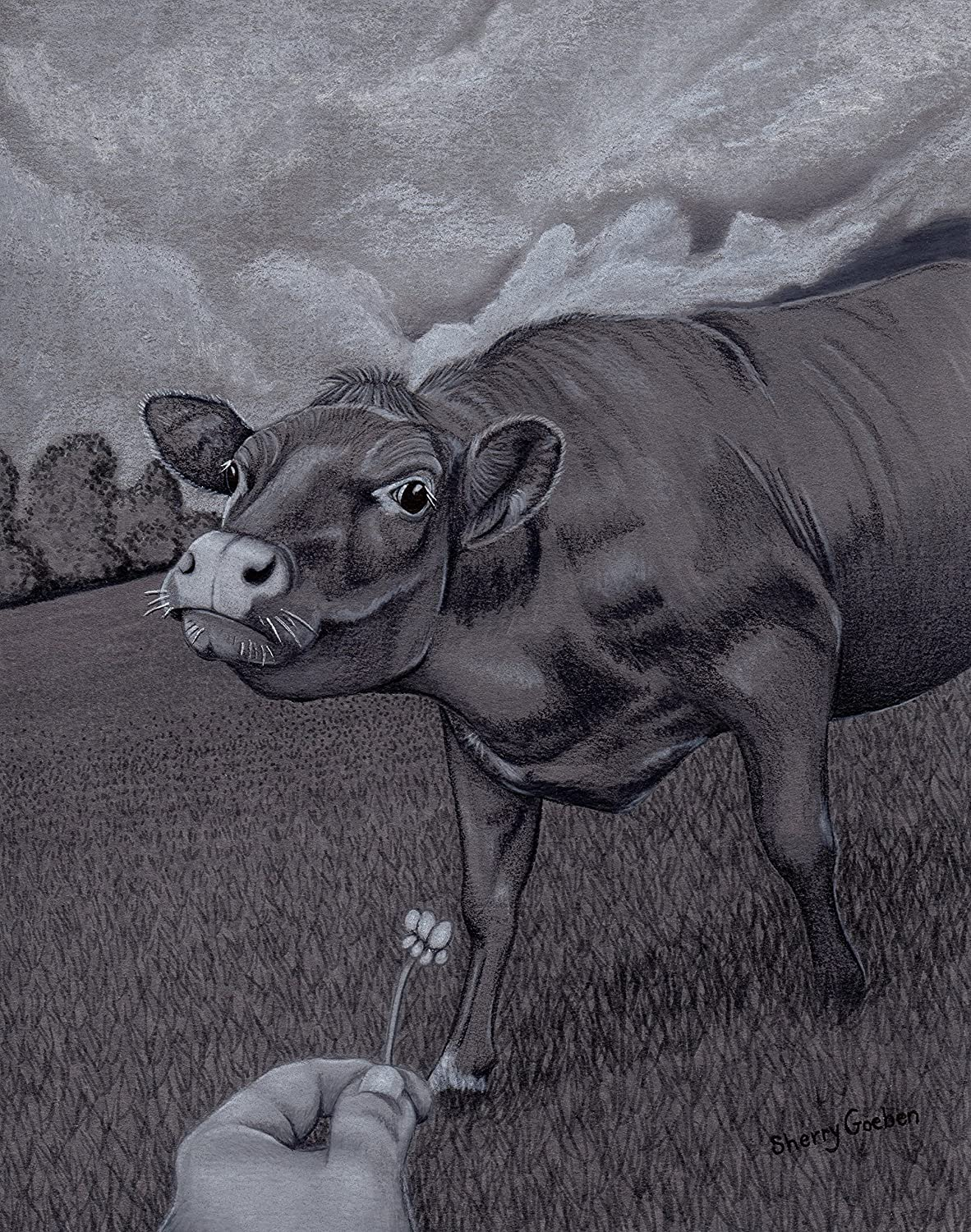 Amazon com cow dairy 7 5x9 5 original art colored pencil drawing sherry goeben gray black white field pasture handmade