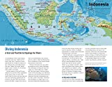 Diving in Southeast Asia: A Guide to the Best Sites