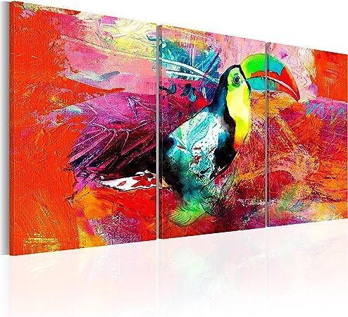 B/&D XXL murando Impression sur Toile intissee 60x30 cm 3 Pieces Tableau Tableaux Decoration Murale Photo Image Artistique Photographie Graphique Oiseau Perroquet color/é g-B-0016-b-e
