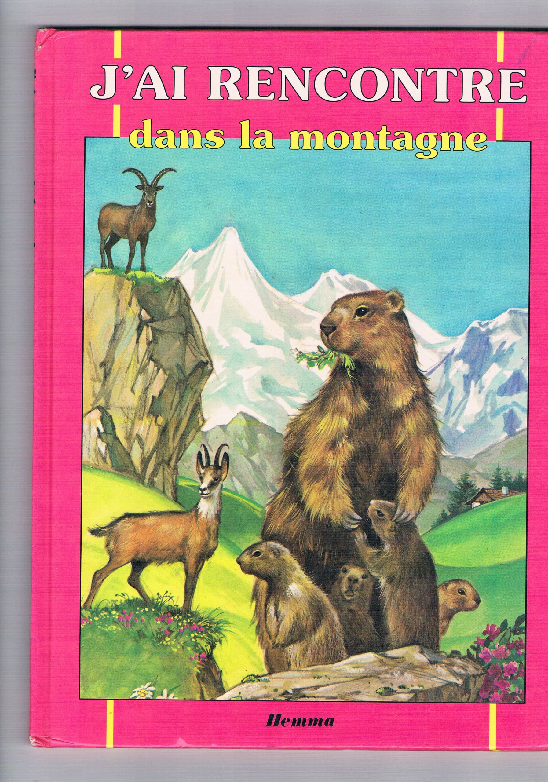 A propos des Rencontres Ciné Montagne