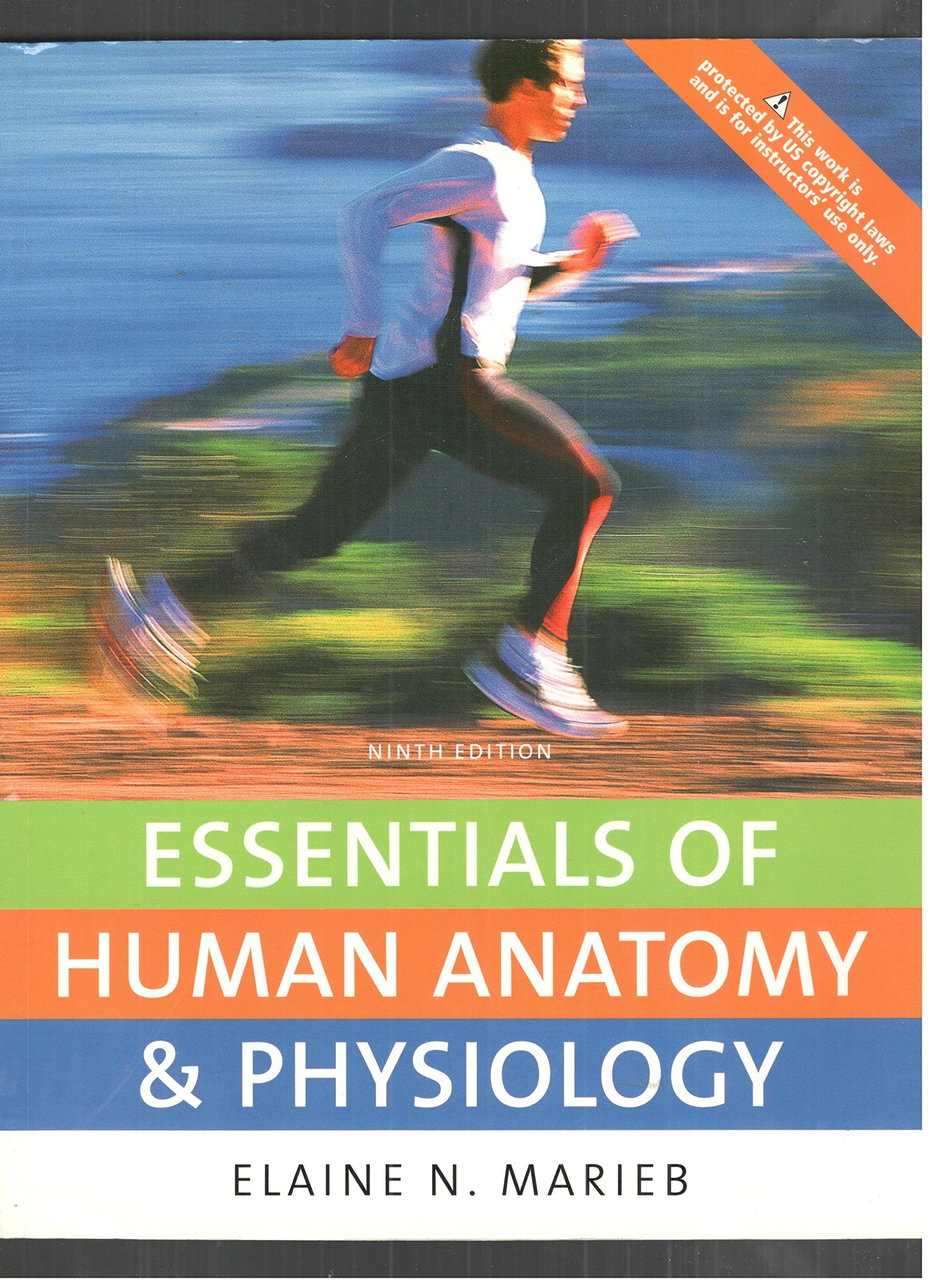Essentials of Human Anatomy & Physiology P-copy (text Component ...