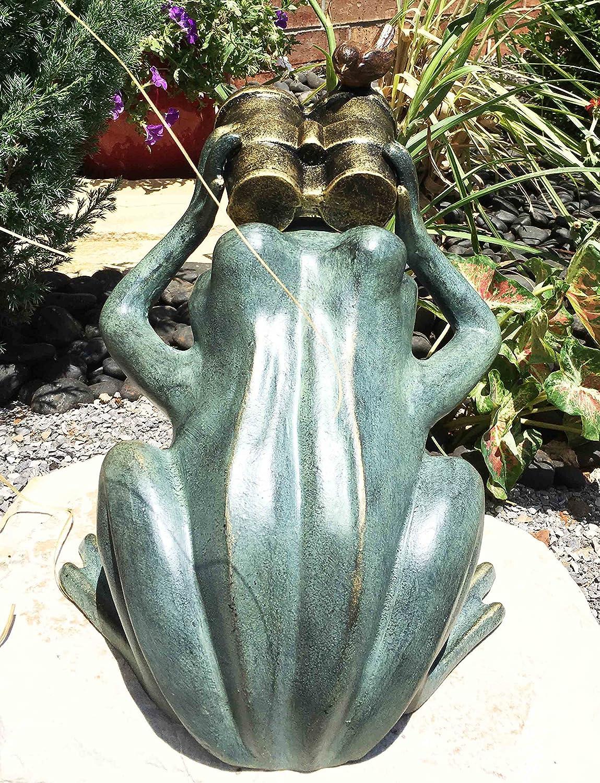 Amazon Co Jp Ebros Verdi Green Aluminum Curious Frog Holding Binoculars With A Bluebird Garden Statue 13 5 Tall As Whimsical Garden Decor Figurine Rustic Cottage Cozy Decore ホーム キッチン