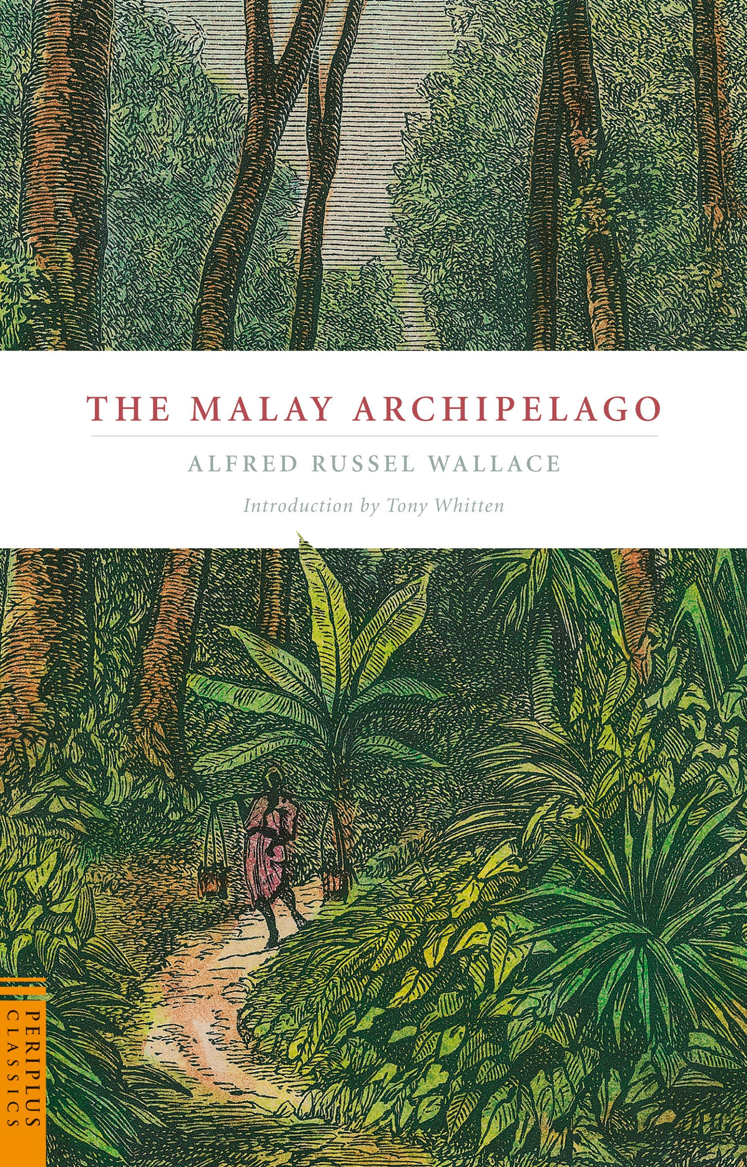 The Malay Archipelago (Periplus Classics Series) pdf