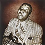 Muddy Waters - Blues Master Works (Double Vinyl LP + CD and Digital Download) [VINYL]