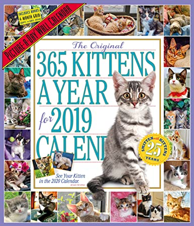 Amazon.com: The 365 Kittens-A-Year Picture-A-Day ...