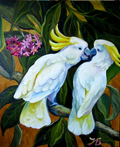 amazon com unexpected kiss cockatoo parrots 24x24 hand painted
