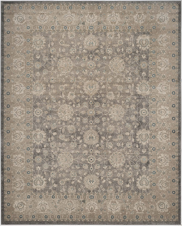 Safavieh grey/beige area rug.