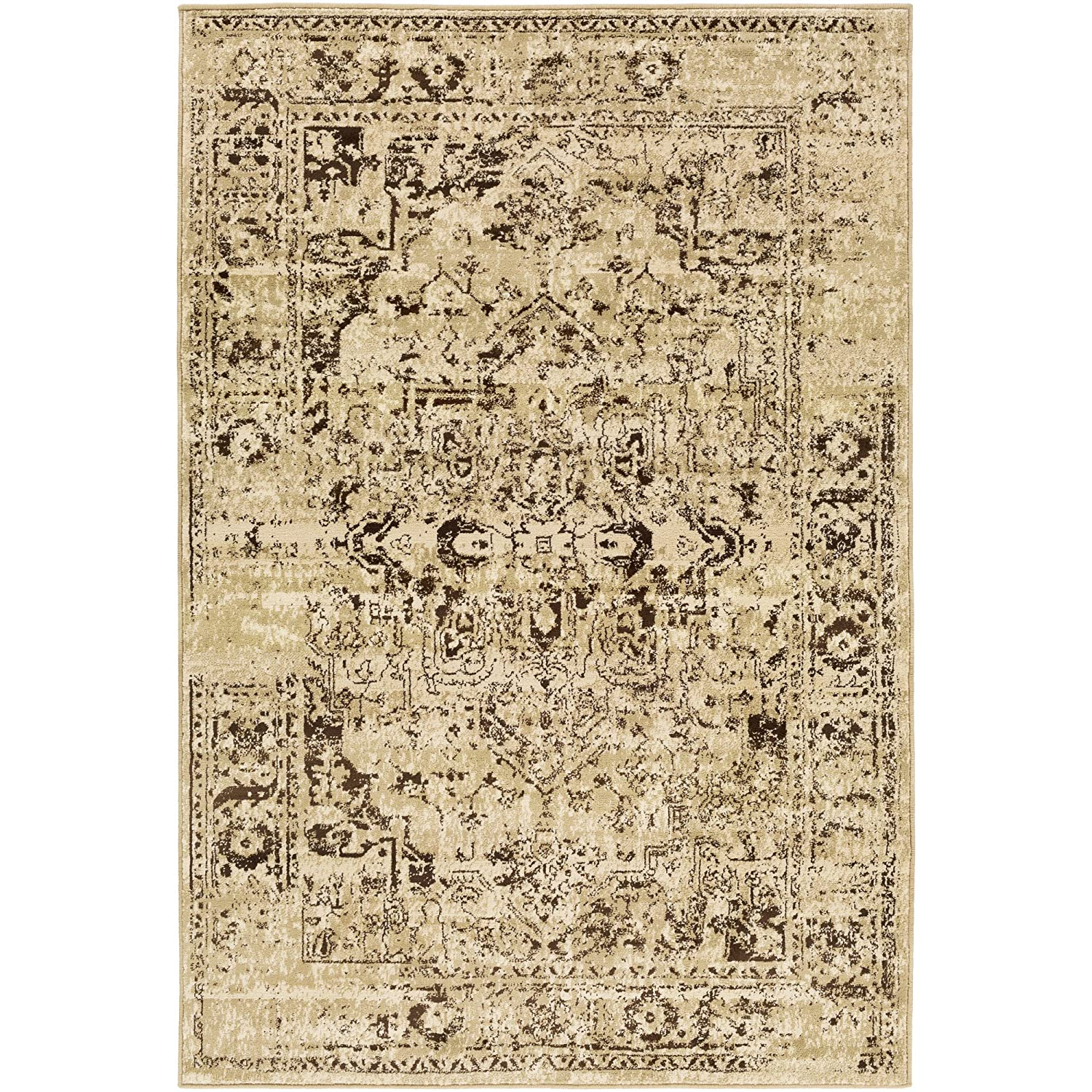 Resolute Beige Updated Traditional Area Rug 2'2' x 7'6'