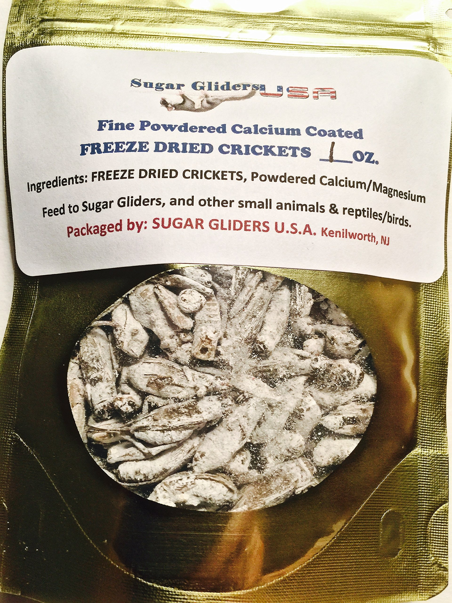FREEZE DRIED CALCIUM COATED CRICKETS (3 OZ) 100+ by Sugar Gliders USA