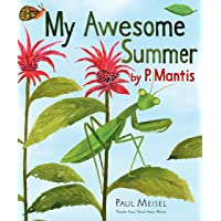 My Awesome Summer by P. Mantis: 1
