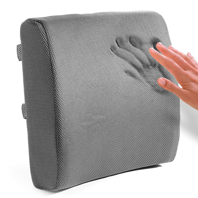 Amazon Easy Posture Memory Foam Lumbar Support Cushion Back
