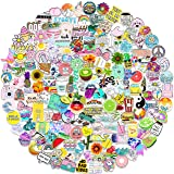Stickers for Water Bottles 200 PCS, Funny Cute Stickers for Teens,Girls,Adults - Perfect for Waterbottle,Laptop,Phone…